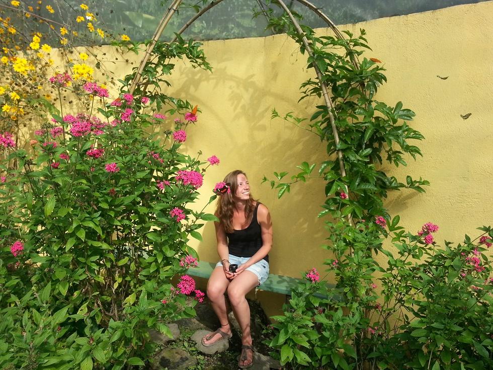 Genieten in de vlindertuin