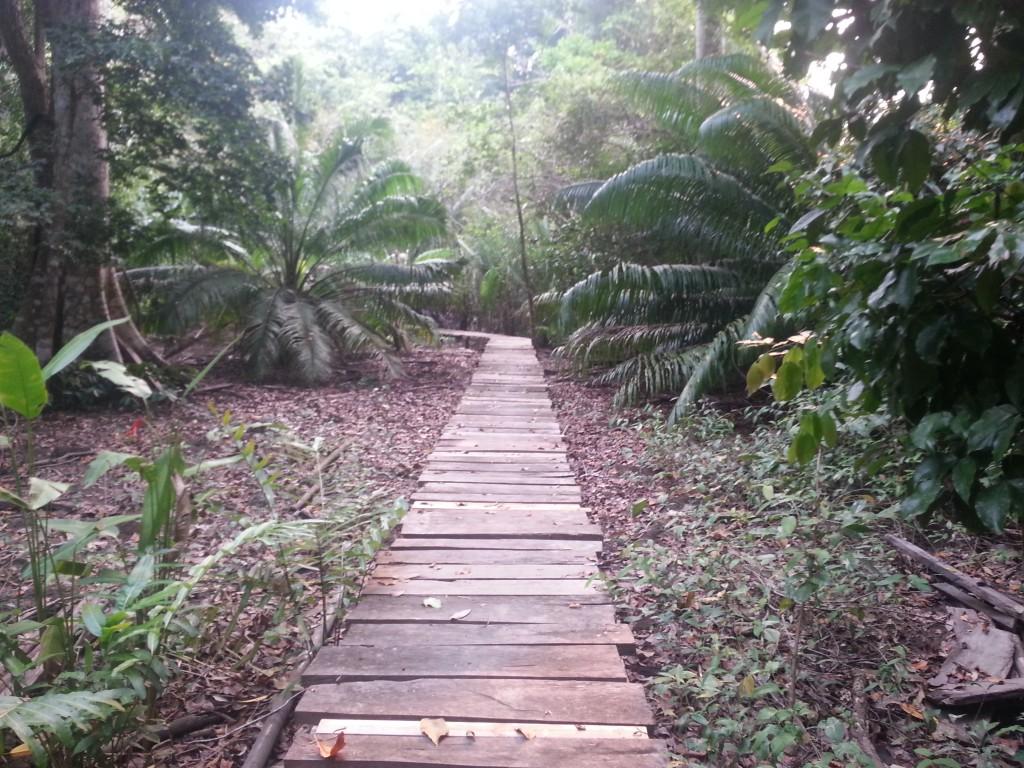 Het pad van het water naar het dorp (ongeveer een kilometer lang).
