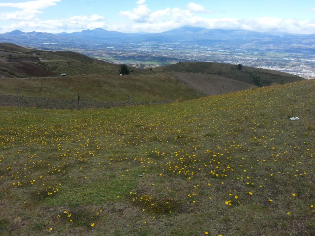 Eén van de uitzichten van de tweede dag mountainbiken.