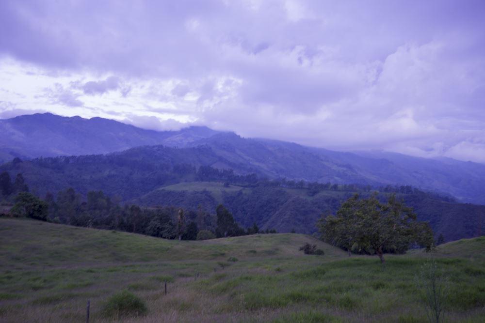 Welkom in het mooie Salento. Dit is uw uitzicht vanuit het hotel.