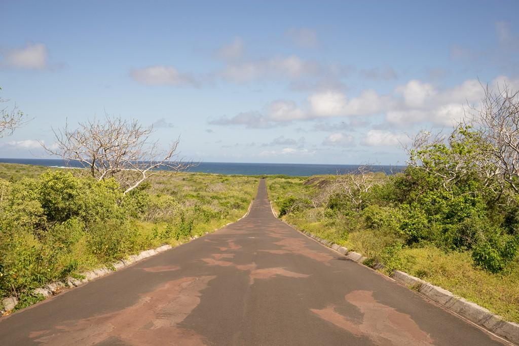 Het lange pad dat we in de volle zon moesten aflopen om bij het strand Loberia te komen.