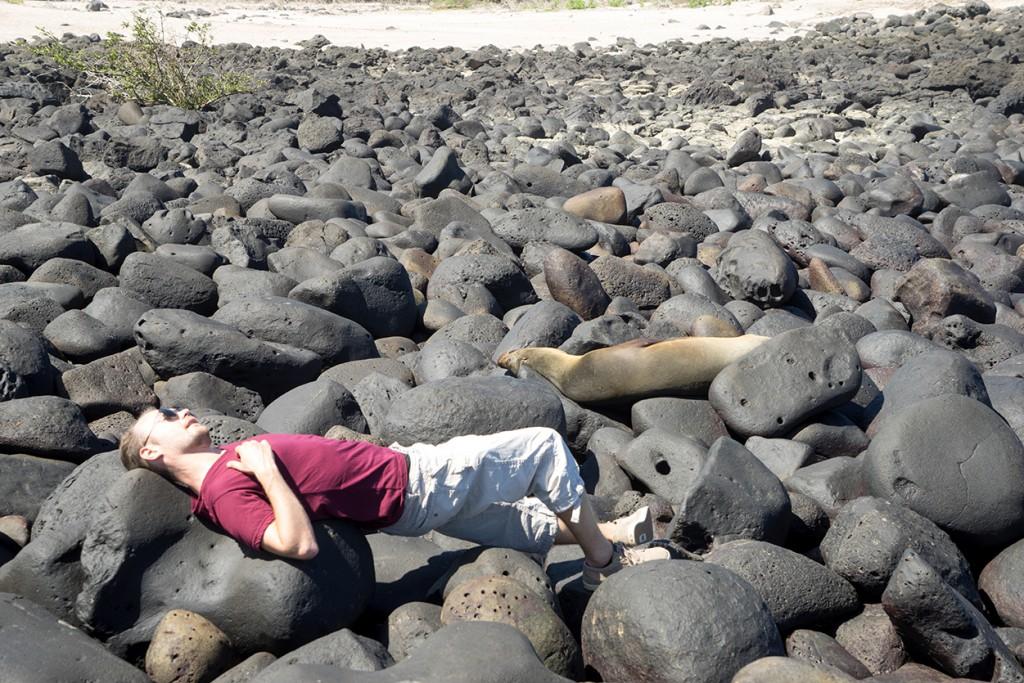 Toch even kijken wat die zeeleeuwen hier nou aan vinden. Ik vond het niet bepaald comfortabel.