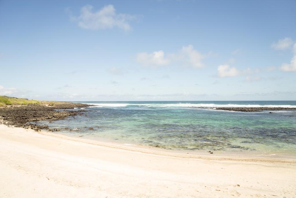 Alweer een mooi strand, dat is Galapagos. Wit strand, groene achtergrond en donker vulkanisch gesteente.