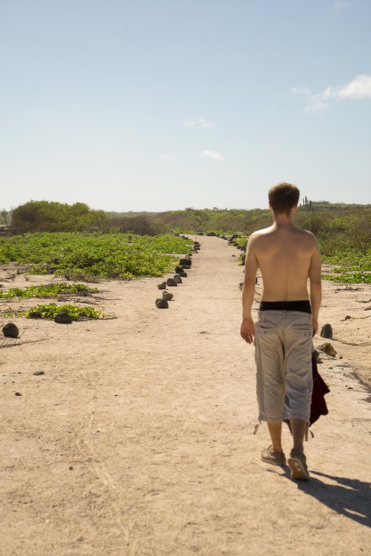 De eenzame reiziger loopt het woestijnpad af in hoop op verfrissing.
