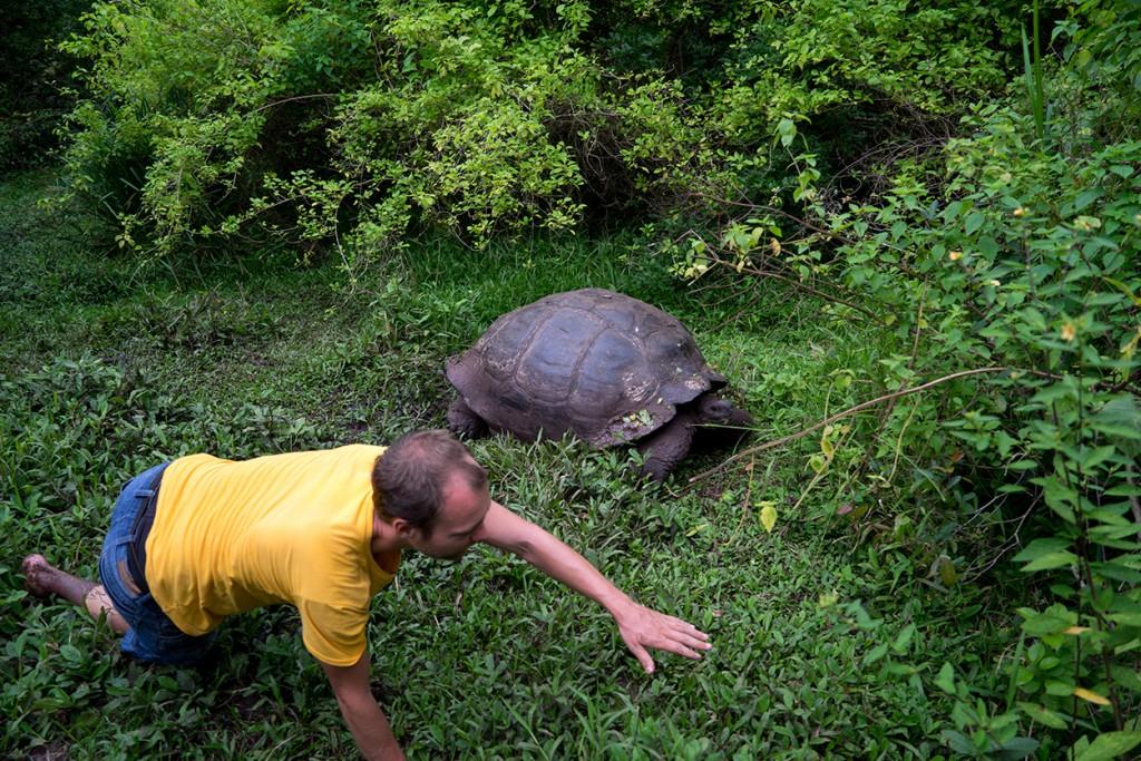 Hoe ging dat verhaal over de race met een schildpad ook alweer?