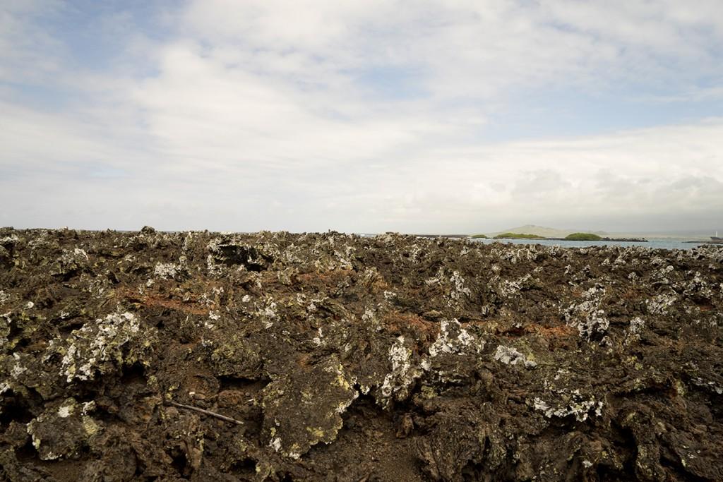 De rotsen van de eilandjes ten zuiden van Isla Isabela herinneren je er aan dat de eiland echt opgebouwd zijn uit vulkanische uitstoot.