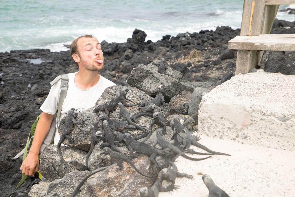 Kijk baby iguanas, ik heb ook een lange tong!