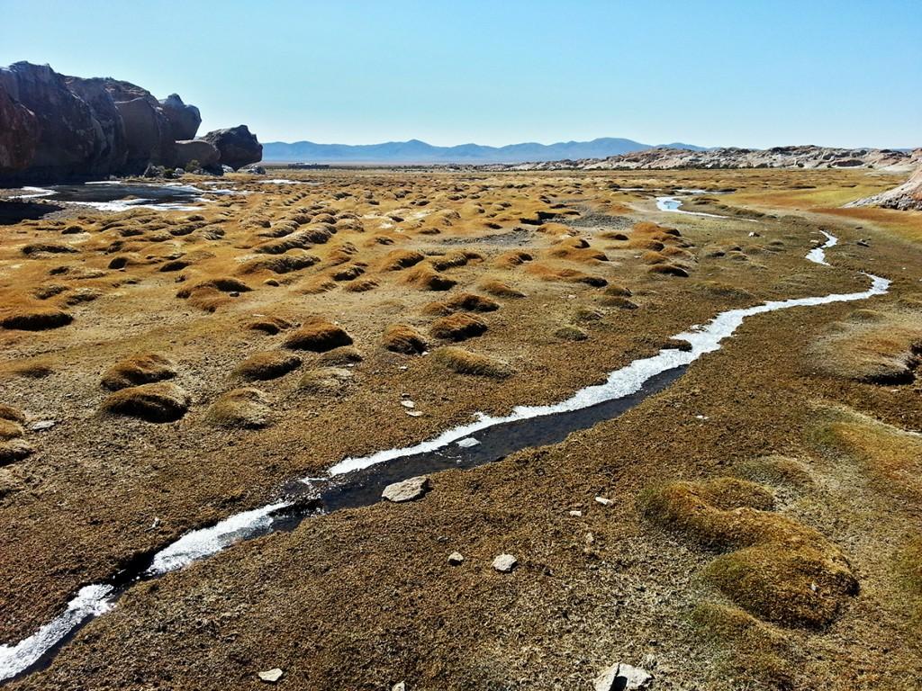 De landschappen veranderde constant. Dit grasgebied tussen de rotsen, veerde als je er op liep. Het witte van de vele stroompjes die zich er een weg doorheen banen is inderdaad ijs.